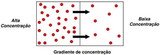 Gradiente de concentração como causa para a transferência de massa