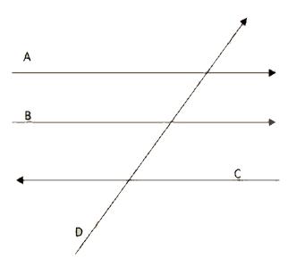 Vetores A, B, C e D representados na figura.