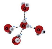 Interação entre moléculas de água