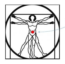 Centro de massa do corpo humano