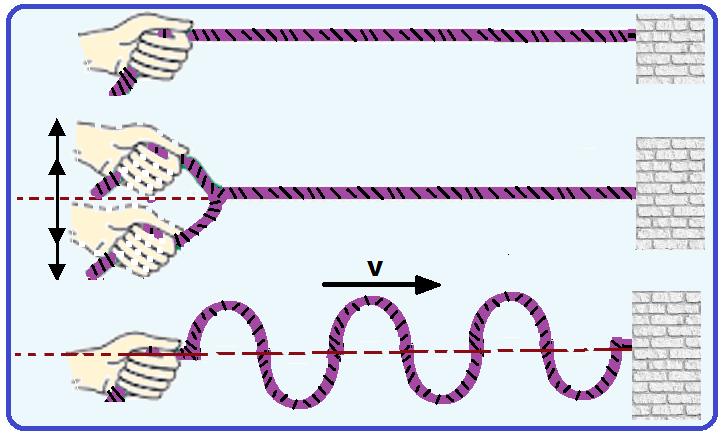 Cordas quando balançadas formam ondas unidimensionais.