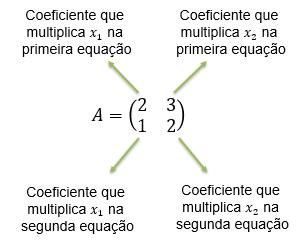 Matriz de coeficientes